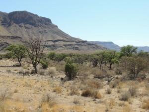 photos Afrique Australe 363