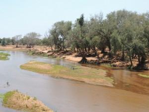 photos Afrique Australe2 116