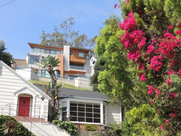 Empilement de villas et bougainvilliers sur les pentes de Griffith à LA