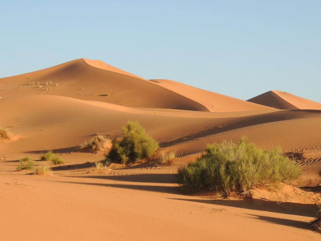 Photos Maroc 2016 092