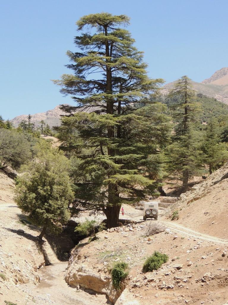 Photos Maroc 2016 -3 006