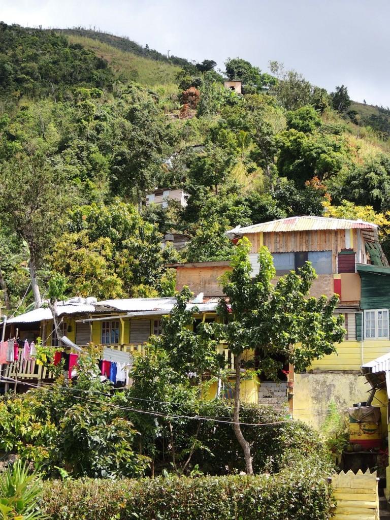 Le village rastafari