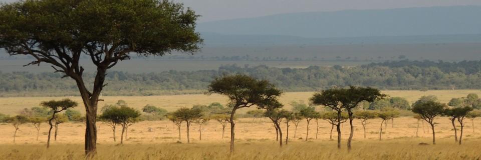 Afrique Australe 2017 : 1° étape, l'Afrique de l'Est