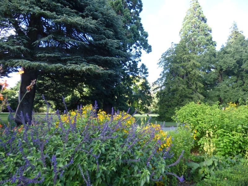 03 Christchurch jardin botanique_01
