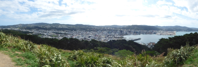 11 Panoramic de Wellington_01