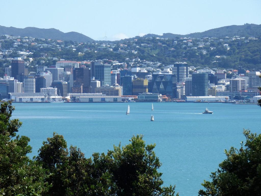 16 La baie de Wellington