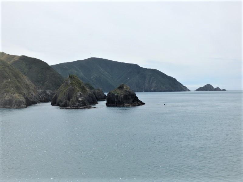 321 La sortie du fjord de Picton_