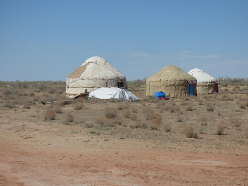 669 Yourtes dans le désert