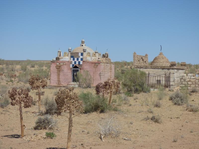 678 Mosquée du désert_01