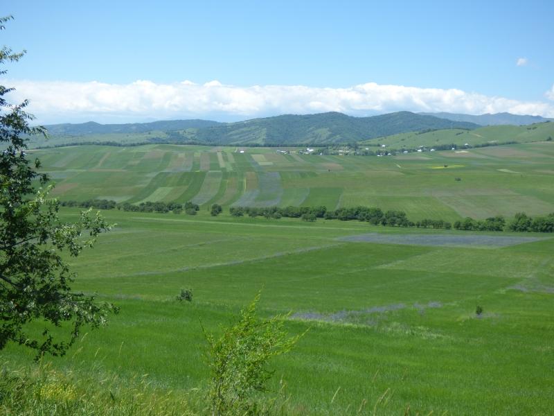 746 La fertile plaine centrale du Kirghistan